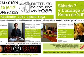 Seminario Enero 2017 Formación Profesores Yoga
